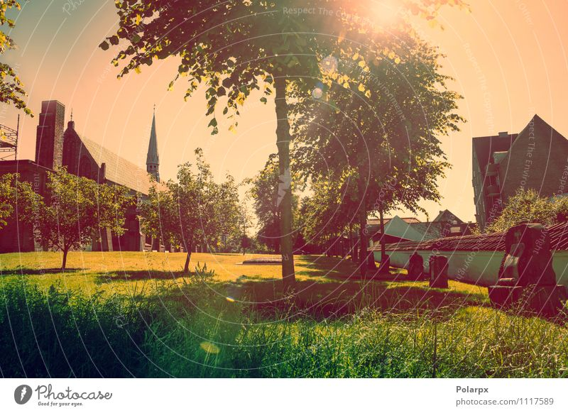 Park with sunshine Summer Sun Landscape Plant Sky Clouds Spring Tree Grass Church Building Architecture Illuminate Bright Green Red Idyll Religion and faith