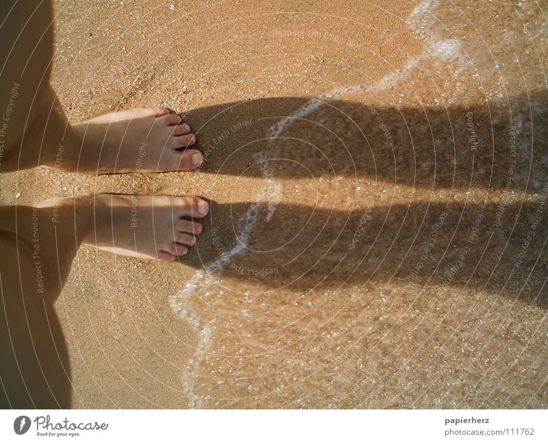 Feet on the beach Beach Vacation & Travel Exterior shot Egypt Waves Coast Freedom Sand Water Shadow