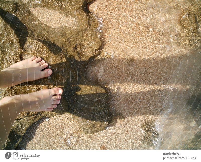 Feet on a rock Egypt Beach Ocean Waves Exterior shot Coast Shadow Water Stone Freedom Human being