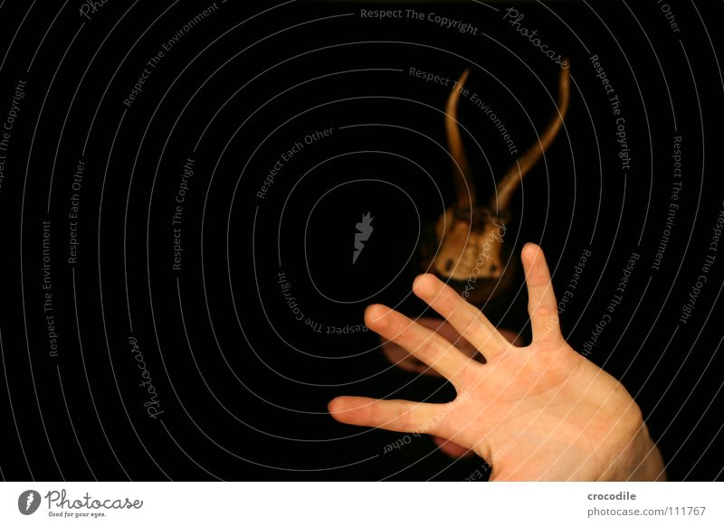 wolpertinger IV Deer Antlers Hand Flashy Dark Frontal Dangerous Fingers Camouflage Fear Panic Protection Mouth Balaclava Threat disguised Hunting Arm