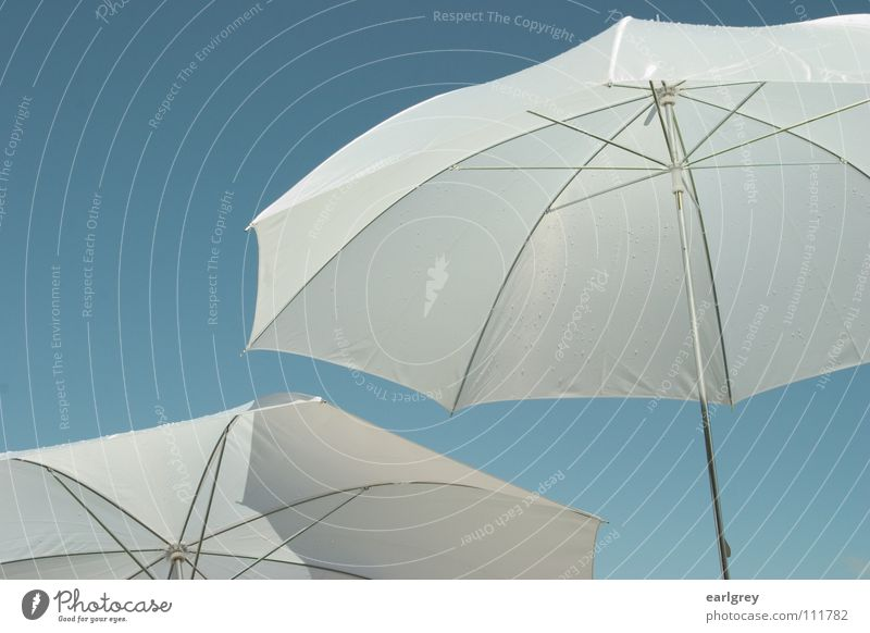 two for cloudless Sunshade White Summer 2 Innocent Air Ease Easy Brilliant Rain Exciting Delicate Exterior shot Blue Sky Beautiful weather Shadow soaring Detail