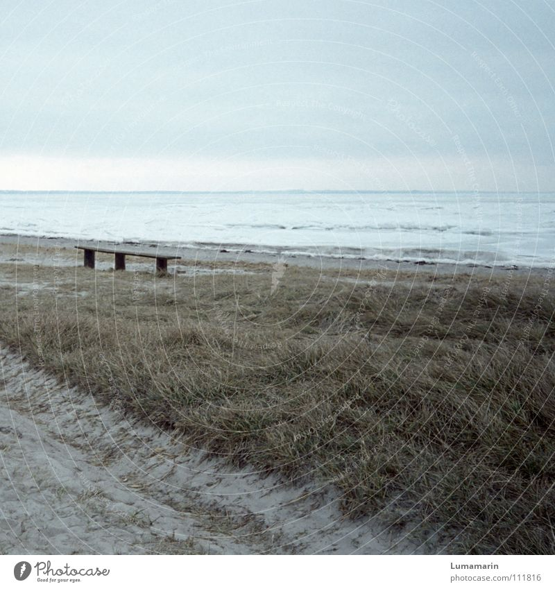 Sky Blue White Ocean Beach Winter Loneliness Cold Death Snow Gray Grass Lanes & trails Sand Coast Weather