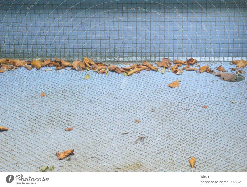 end of season flaked Autumn Sunbathing Early fall Swimming pool Well Break Bathroom Holiday season Closed Extinct End of the season Mosaic Empty Loneliness
