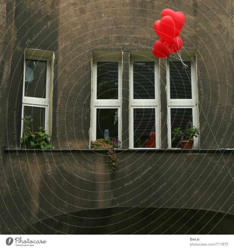 heartily Living or residing House (Residential Structure) Birthday Pot plant Town Facade Window Balloon Heart Kitsch Gloomy Gray Red Emotions Infatuation Hope