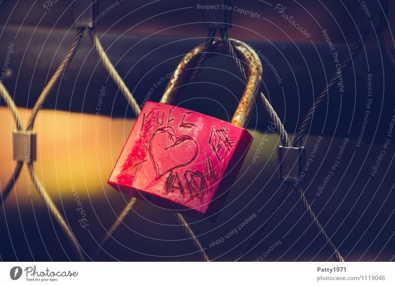 owl + eagle Lifestyle Bridge Love padlock Padlock Display of affection Hang Red Sympathy Friendship Together Romance Rust Loyalty Subdued colour Exterior shot