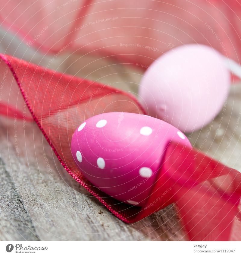 Easter eggs Easter egg nest Colour Pink Easter Monday Background picture Happiness Egg Easter Bunny Spring Near Violet Close-up Workshop Red Decoration