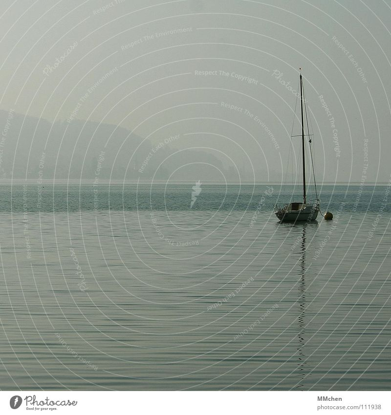 The lake rests still Fog Lake Morning fog Calm Watercraft Sailing Gray Dreary Autumn Loneliness Vacation & Travel Lake Constance Sky Gloomy Far-off places