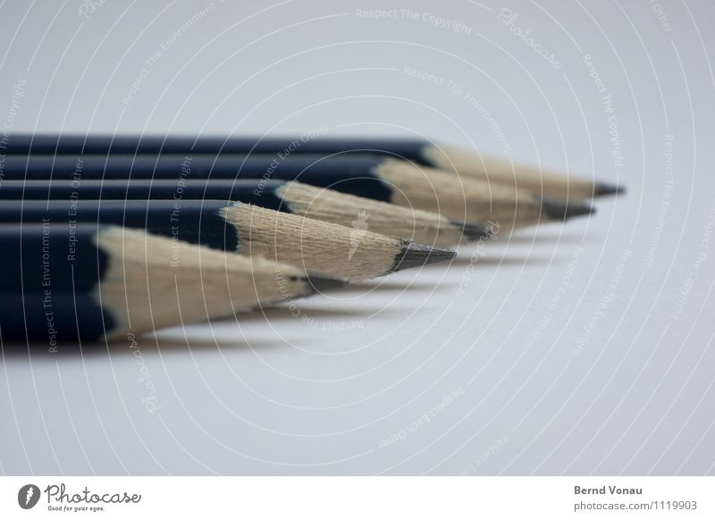 Blue Wood Gray Brown Bright Office Multiple Creativity Point Paper Clean Direction Dynamics Pen Pencil Forwards