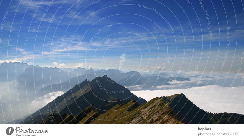 Nature Beautiful Sky Clouds Far-off places Life Mountain Hiking Fog Vantage point Switzerland Alps Longing Peak Wanderlust Eternity
