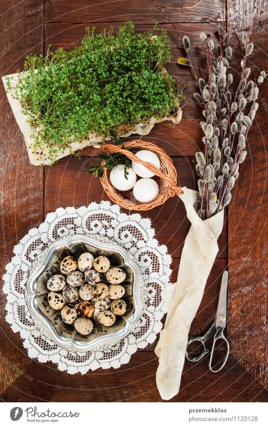 Easter composition of eggs, cress and catkins on wooden table Decoration Table Scissors Spring Paper Wood Metal Natural Brown Green Tradition Basket bobwhite