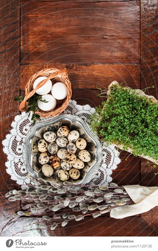 Easter composition of eggs, cress and catkins on wooden table Decoration Table Spring Paper Wood Metal Natural Brown Green Tradition Basket bobwhite candid