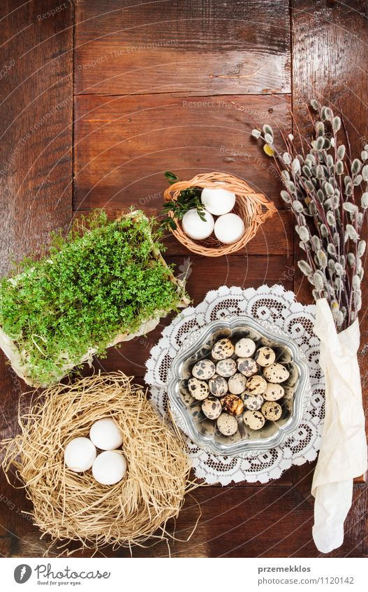 Easter composition of eggs, cress and catkins on wooden table Green Spring Natural Dish Wood Brown Metal Decoration Table Copy Space Paper Easter Tradition Egg Top Vertical