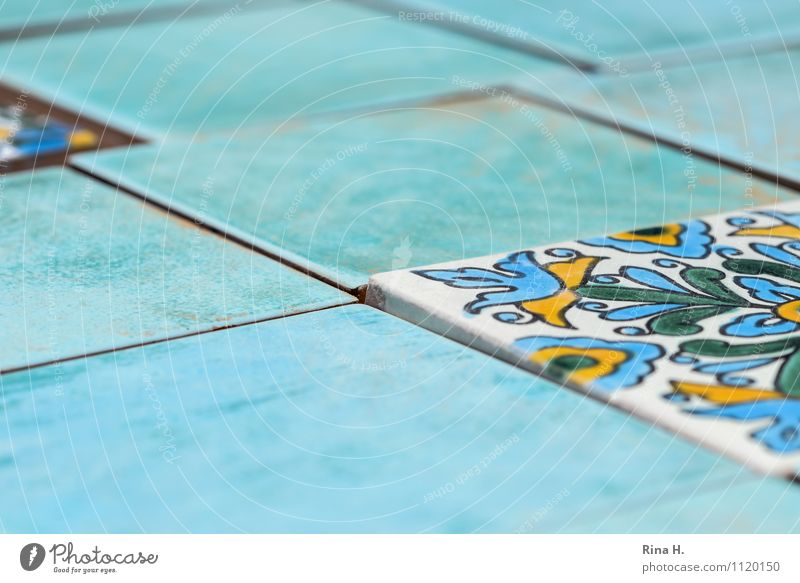 turquoise Interior design Decoration Turquoise Tile Pattern Near and Middle East Stumbling block Seam Colour photo Exterior shot Deserted Shallow depth of field