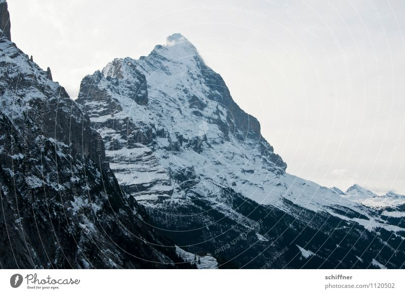 New day, new Eiger Environment Nature Landscape Rock Alps Mountain Peak Snowcapped peak Glacier Cold Steep face Bernese Oberland Point Exterior shot Deserted