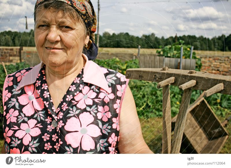 Human being Woman Sky Old Blue Green Beautiful Red Animal Face Meadow Nutrition Food Grass Happy Work and employment