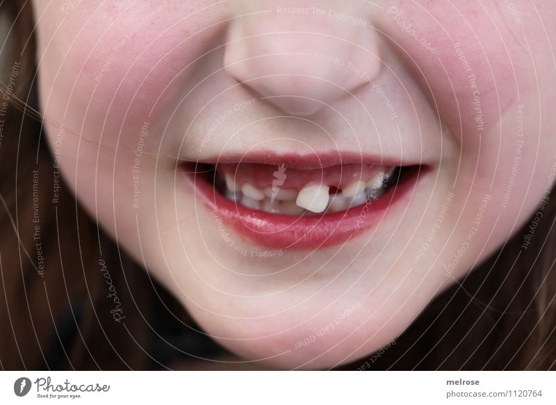 loose tooth Child Girl Infancy Face Nose Mouth Lips Teeth Incisor Milk teeth 1 Human being 3 - 8 years Loose tooth Hang Smiling Illuminate Growth Friendliness
