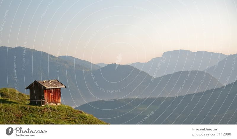 Lonely Planet Barn fowl Federal State of Tyrol Hiking Kitzbühel Alps Austria Nature Loneliness Green Panorama (View) Mountain ridge Meadow Alpine pasture