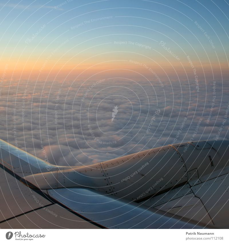 off to the south I Airplane Above the clouds Clouds Sunrise Cold Technical Sky Covers (Construction) Sunset Harmonious Flying sea of clouds Tall Blue Technology