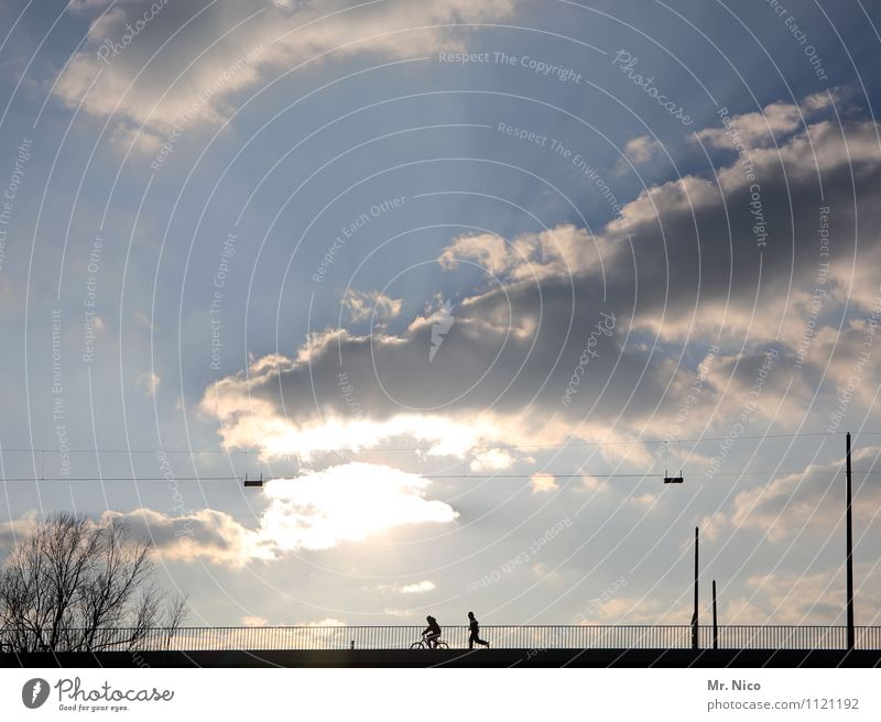 Human being Sky Tree Clouds Joy Environment Street Movement Sports Happy Healthy Lifestyle Leisure and hobbies Bicycle Walking Climate