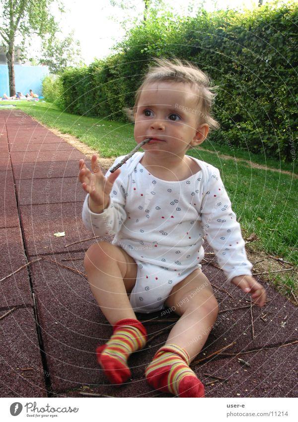 little stick Stick Nutrition Dream Child Observe