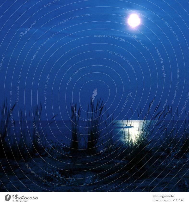 Moonlight 78 Beach Grass Stemless carline thistle Thistle Romance Night Dark Twilight Reflection Fisherman Fishing boat Angler Greece Horizon Full  moon Ocean