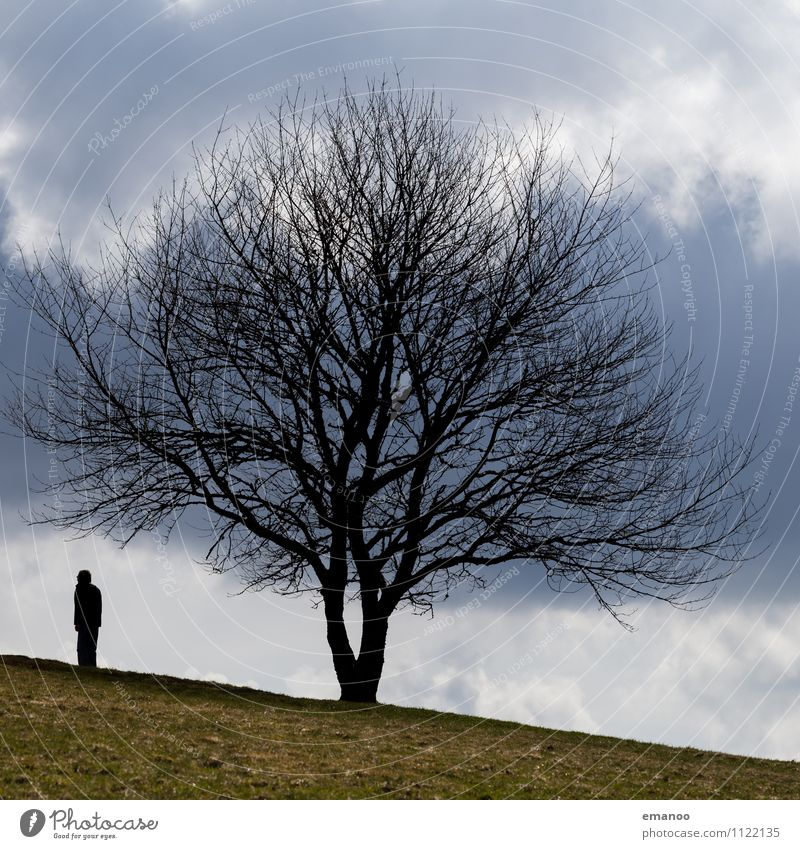Human being Sky Nature Vacation & Travel Man Tree Loneliness Clouds Joy Winter Far-off places Cold Adults Mountain Senior citizen Grass