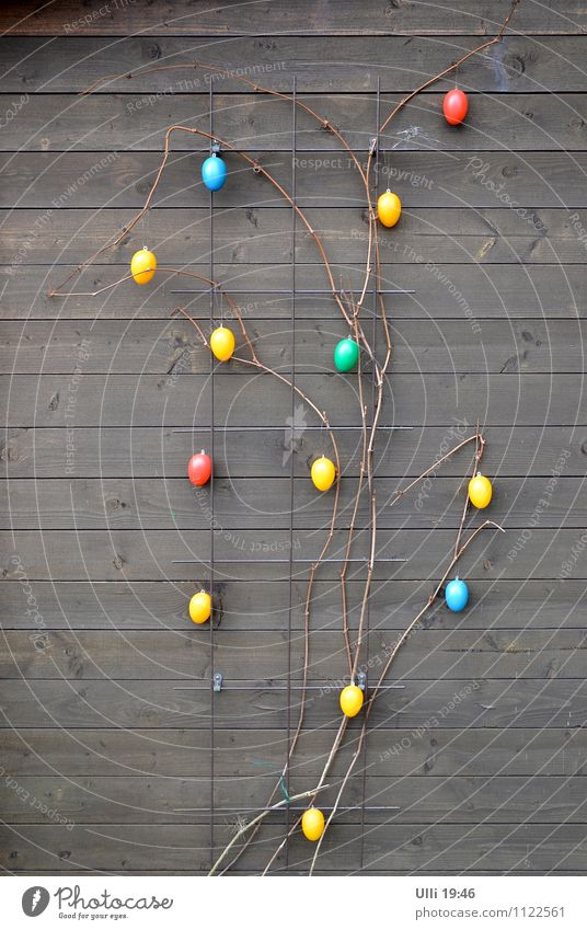 Blue Green Red Cold Yellow Spring Wood Feasts & Celebrations Garden Brown Moody Together Decoration Cute Sign Easter