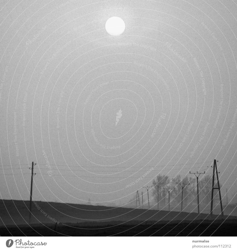 Sun Winter Loneliness Dark Gray Field Fear Fog Electricity Creepy Agriculture Hide Electricity pylon Panic Home country Mecklenburg-Western Pomerania