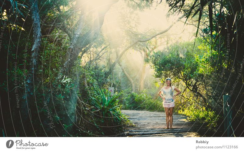 A Fräulein stands in the forest... Woman Adults 1 Human being Nature Landscape Plant Sunlight Summer Tree Garden Park Forest Virgin forest Oasis