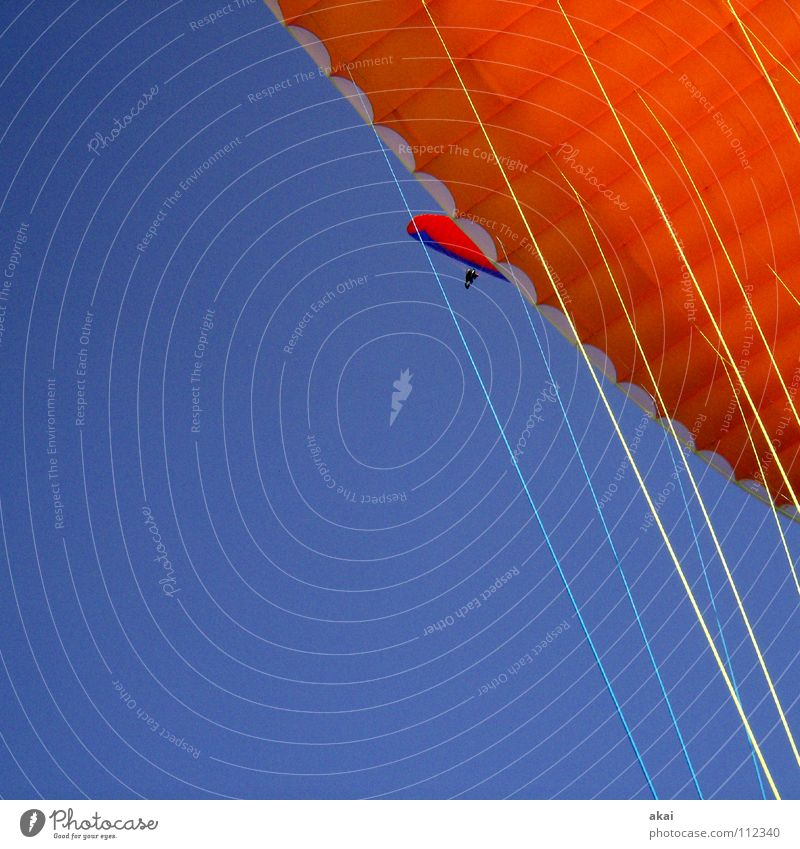 Paraglider Formation Operational Paragliding Play of colours Sky blue Clearance for take-off Orange Contrast Monitoring Schauinsland Joy Leisure and hobbies
