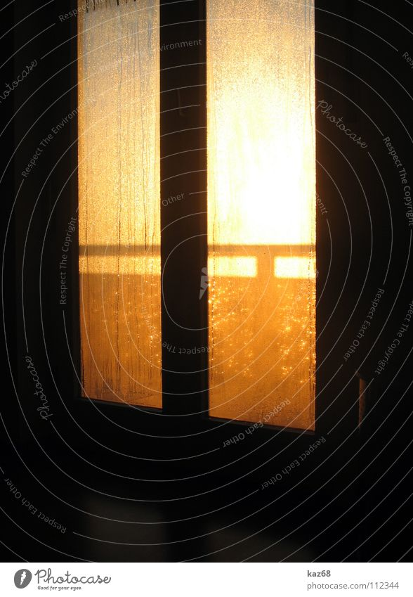 House (Residential Structure) Life Window Warmth Graffiti Bright Room Lighting Power Flat (apartment) Glass Door Background picture Gold Rope Beginning
