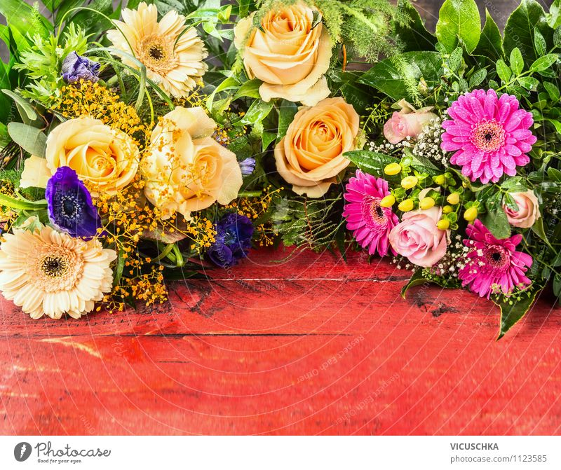 Nature Plant Beautiful Summer Flower Leaf Yellow Love Blossom Style Wood Background picture Feasts & Celebrations Garden Pink Design