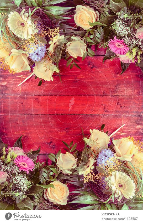Nature Plant Summer Flower Red Style Wood Background picture Feasts & Celebrations Garden Lifestyle Pink Design Decoration Elegant Birthday