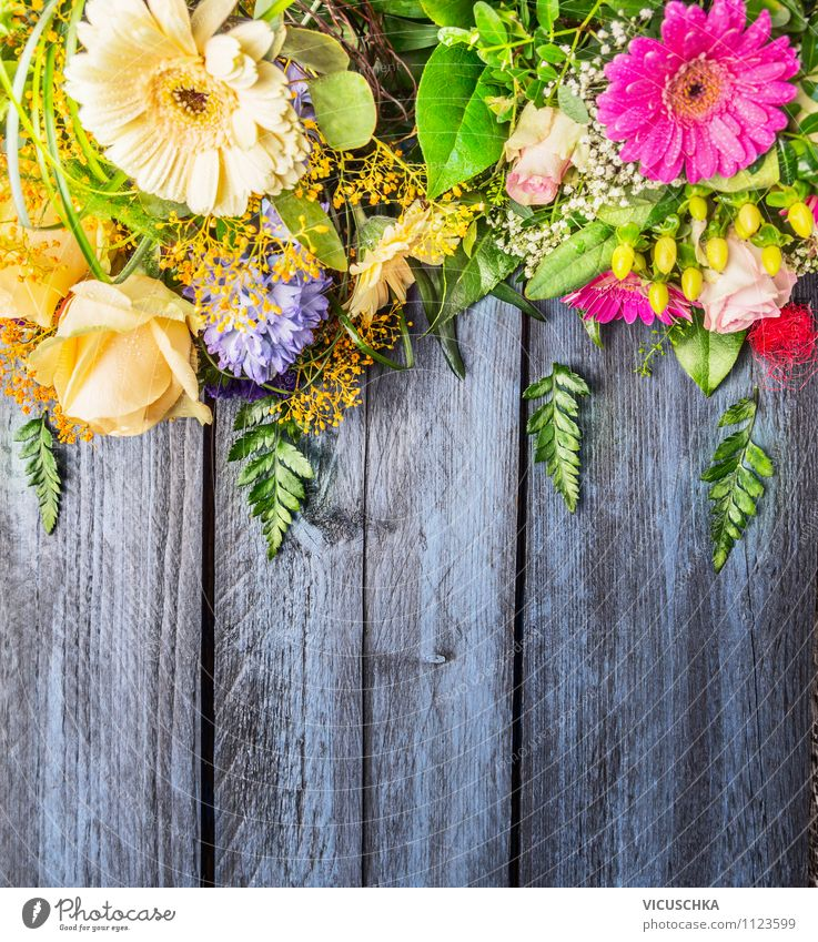 Nature Plant Blue Green Beautiful Summer Flower Joy Yellow Love Interior design Style Background picture Wood Garden Lifestyle