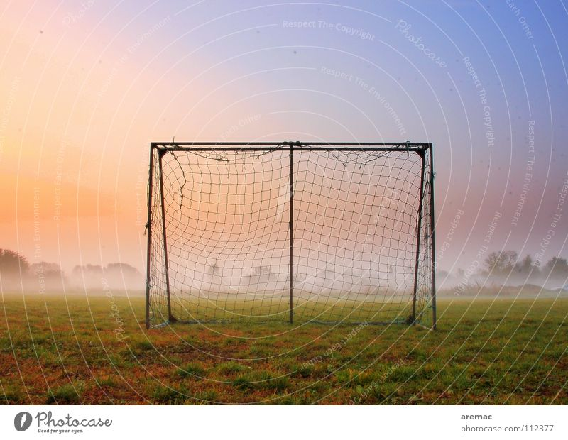 After the game is before the game Playing Football pitch Meadow Grass Green Fog Moody Sunrise Sports Autumn Leisure and hobbies Soccer Action