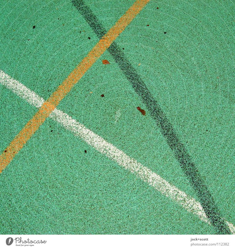 VfL Line Cross Playing field Meeting point Second-hand Line width Surface Floor covering Curve Axle Ground Date Arch Detail Abstract Structures and shapes