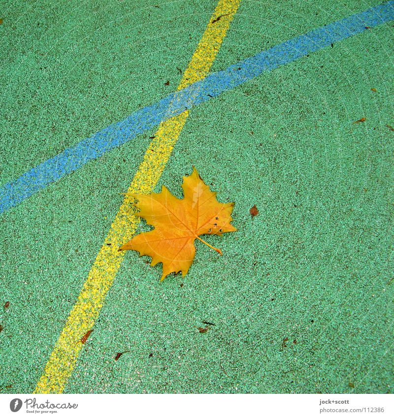 Blue Green Leaf Yellow Life Emotions Sports Feasts & Celebrations Line Arrangement Perspective Beginning Force Floor covering Ground Shows