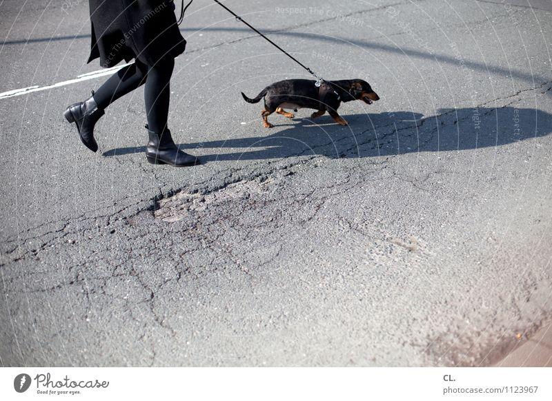 Dog Human being Woman Animal Adults Life Street Feminine Lanes & trails Legs Going Leisure and hobbies Transport Joie de vivre (Vitality) Broken Traffic infrastructure