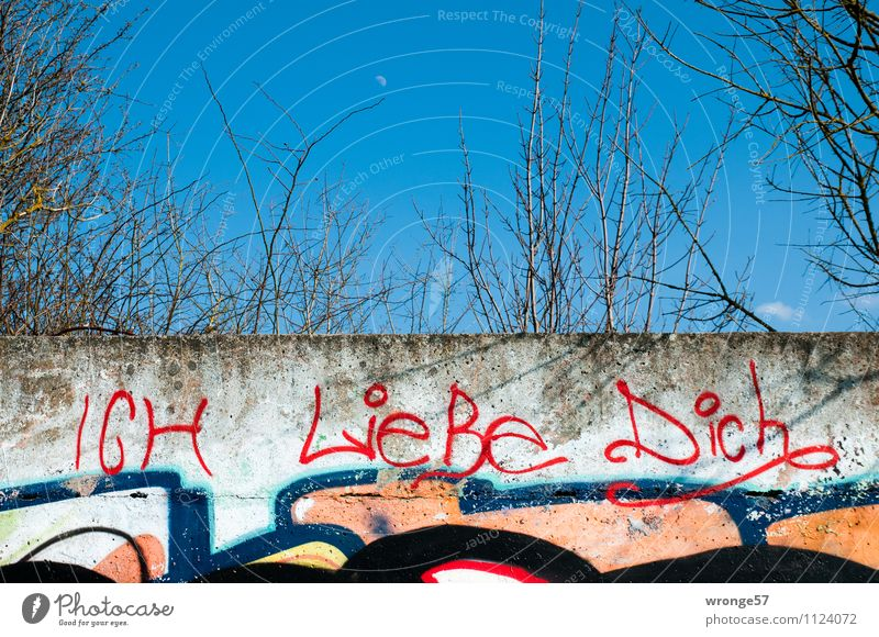 I love you Graffiti Wall (barrier) Wall (building) Characters Love Write Blue Multicoloured Red Infatuation Loyalty Romance Interpretation Communicate