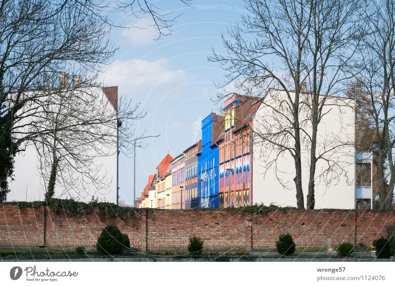 City Blue House (Residential Structure) Street Wall (building) Building Wall (barrier) Brown Germany Europe Old building Redevelop Brick wall Gable Magdeburg