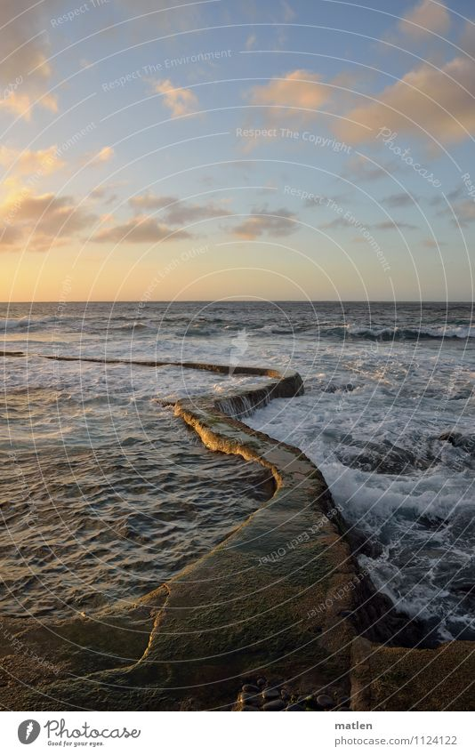 sea snake Landscape Water Sky Clouds Horizon Sunrise Sunset Spring Weather Beautiful weather Waves Coast Ocean Deserted Wall (barrier) Wall (building) Blue Gold