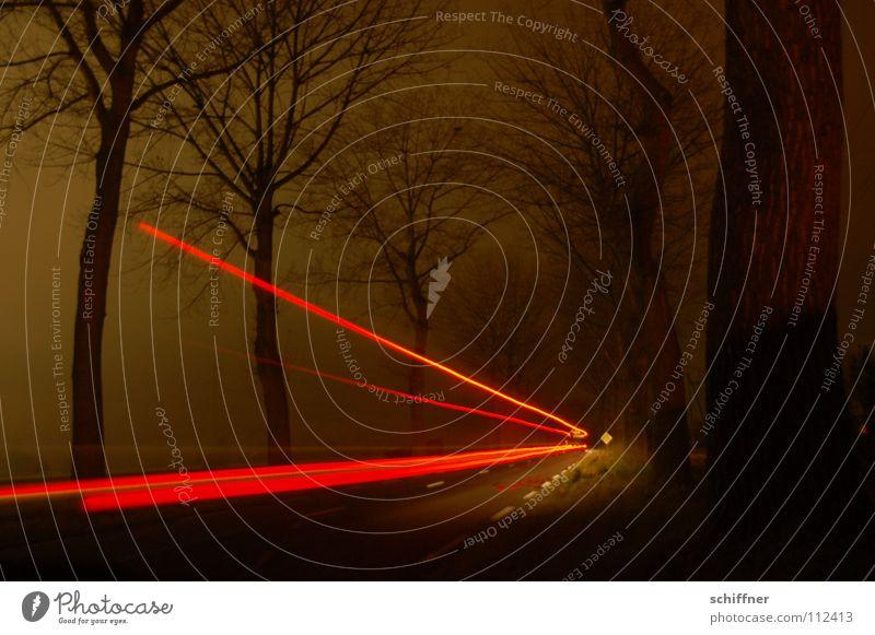 Red arrow or radar trap fake Tree Avenue Night Dark Fog Rear light Brake light Truck Motor vehicle Mobile home Radar speed check Road traffic Transport