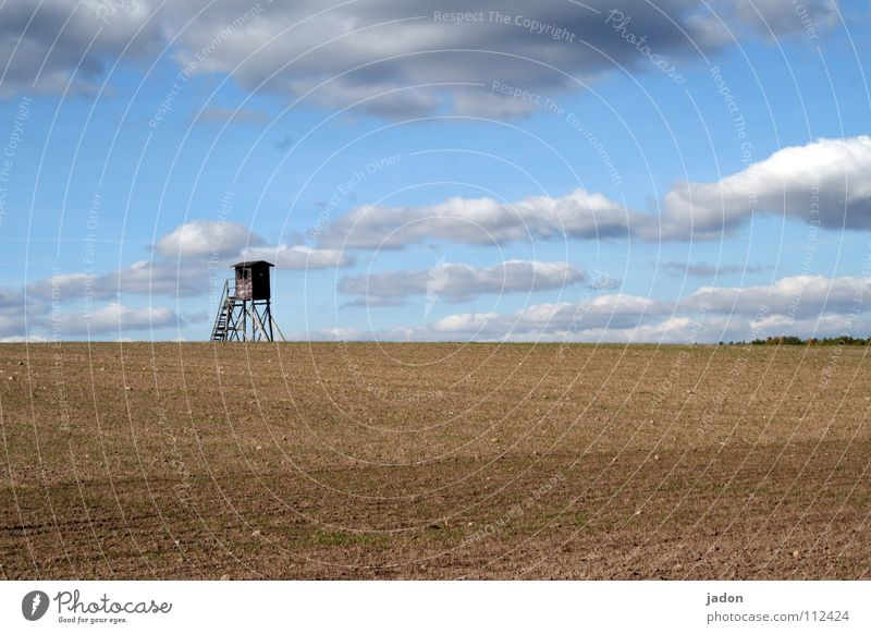 Strategic point Vantage point Hunting Blind Meadow Field Clouds Loneliness White Horizon Calm Background picture Brandenburg Flat (apartment) Room Minimal Sky