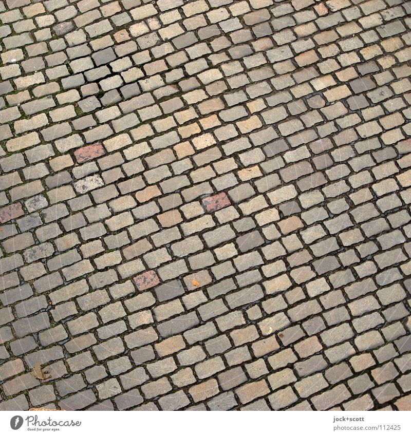 tilted Cobblestone squared Transport Traffic infrastructure Street Stone Line Round Many Orderliness Arrangement Perspective Natural stone Cat's head Surface