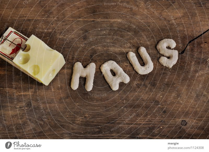 The letters MAUS before a mousetrap with cheese Cheese Animal Mouse Mouse trap Ambush Trapper 1 To hold on To feed Brown Yellow Fear Dangerous Stress Mistrust
