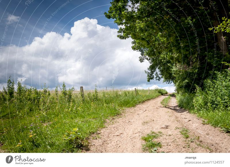 trip Trip Summer Hiking Environment Nature Landscape Sky Clouds Horizon Beautiful weather Plant Tree Lanes & trails Relaxation Simple Moody Colour photo