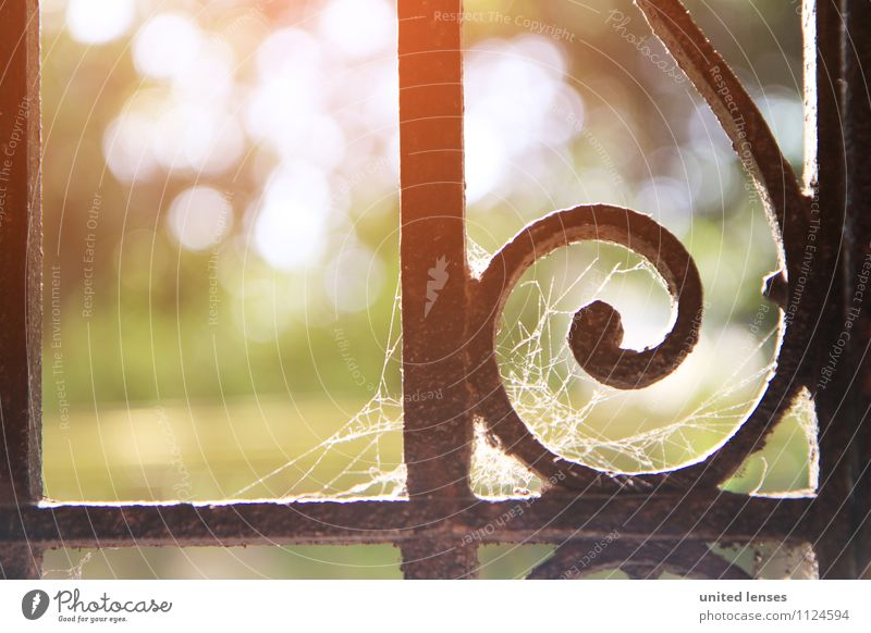 FF# Sunny Day Art Esthetic Contentment Idyll Peaceful Dreamily Handrail Ornate Spider's web Old Uninhabited Historic Remote Detail Decoration Park Cemetery Iron