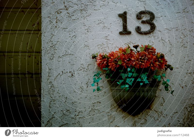 Thirteen 13 Digits and numbers Popular belief House number Wall (building) Plaster Garage Highway ramp (entrance) Jewellery Flower Flower arrangement
