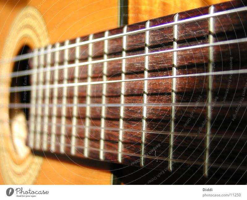 Guitar Photographic technology Silken Fretboard