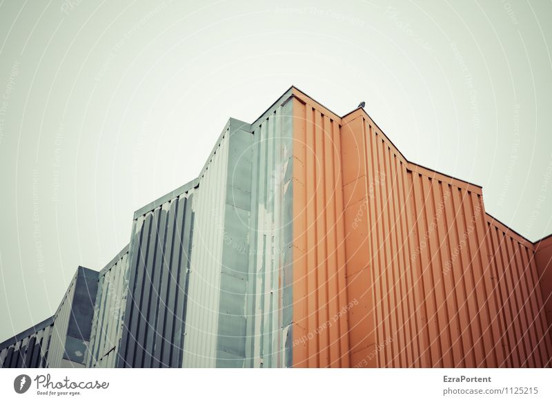 Sky City Colour House (Residential Structure) Animal Wall (building) Architecture Building Wall (barrier) Gray Line Bird Metal Facade Orange Design